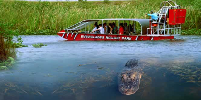 airboat rides in florida everglades holiday park